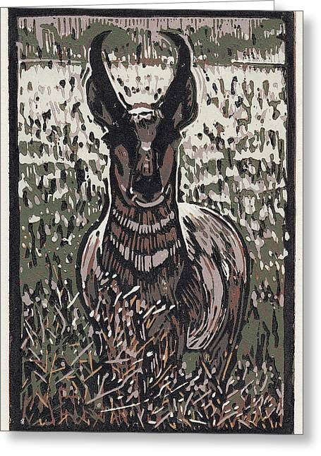 Linocut Paintings Greeting Cards - Pronghorn - Linocut Print Greeting Card by Manny Mellor