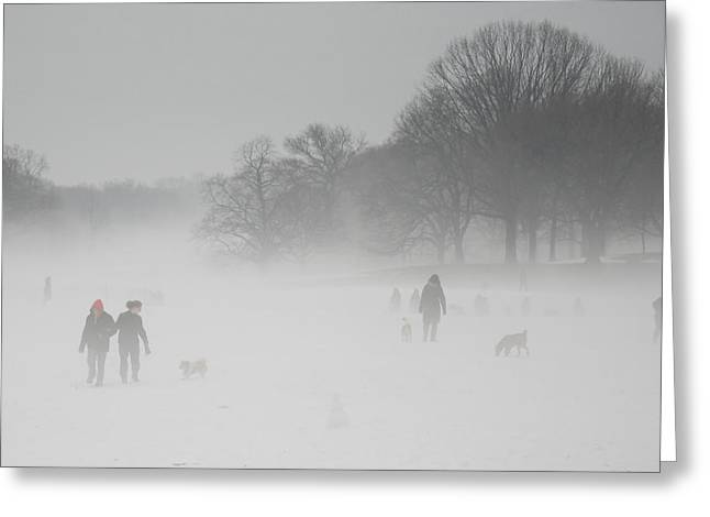 Prospects Greeting Cards - Prospect Park Brooklyn in Winter Greeting Card by Julie VanDore