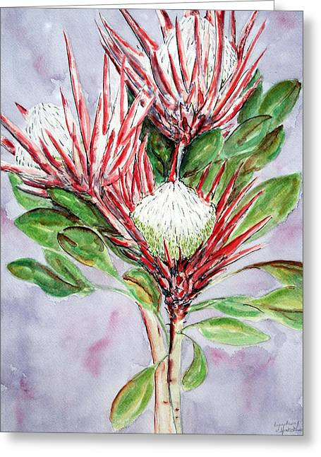 Lyndsey Hatchwell Greeting Cards - Proteas Greeting Card by Lyndsey Hatchwell