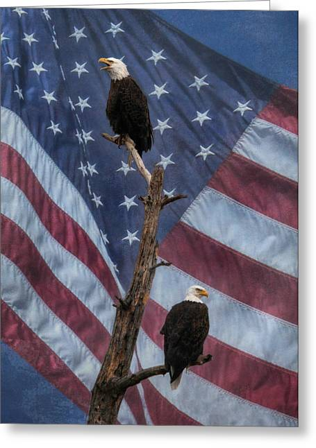Protect And Defend Greeting Card by Lori Deiter