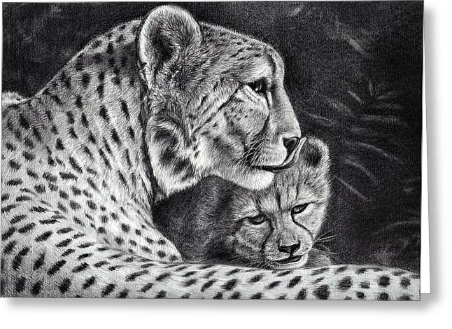 Wild Life Drawings Greeting Cards - Protect Greeting Card by Heidi  Kriel