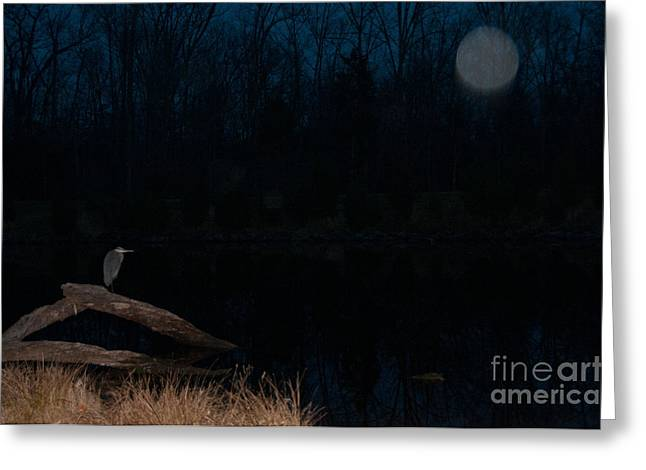 Recently Sold -  - Night Angel Greeting Cards - Protecting the Protector Greeting Card by Doug Kean