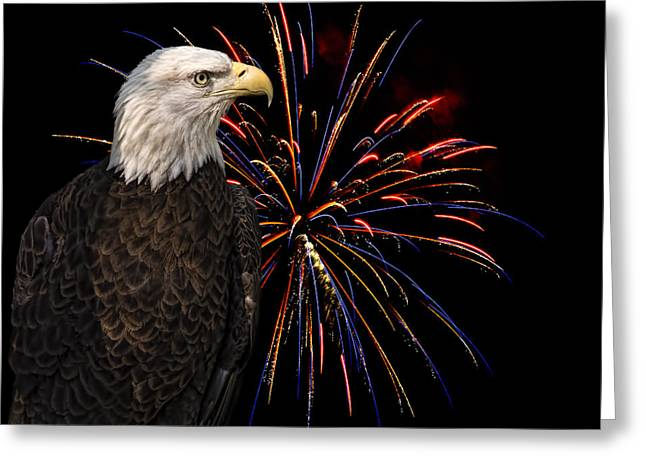 Wildlife Celebration Greeting Cards - Proud and Free 4 Greeting Card by Penny Lisowski