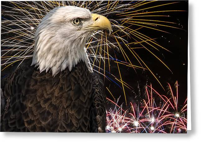 Wildlife Celebration Greeting Cards - Proud and Free Greeting Card by Penny Lisowski
