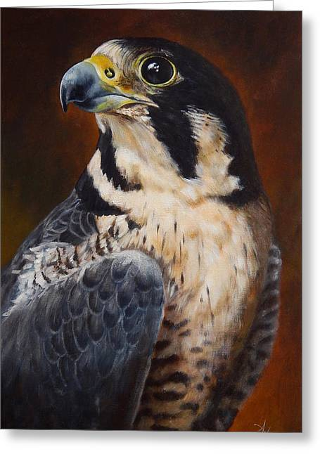 Peregrine Falcon Greeting Cards - Proud - Peregrine Falcon Greeting Card by Arie Van der Wijst