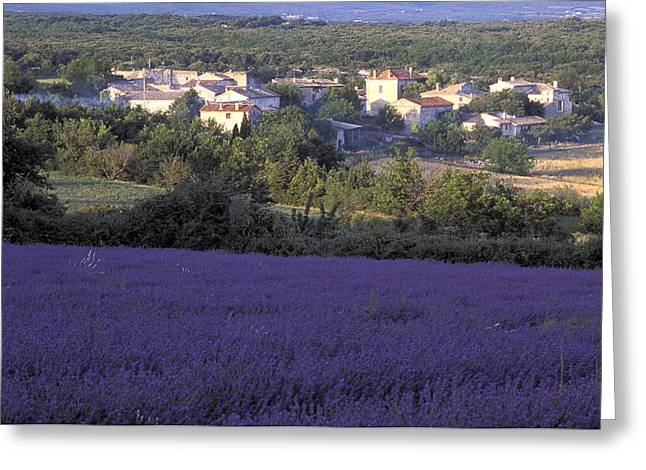 Southern France Greeting Cards - Provence Greeting Card by Christian Heeb