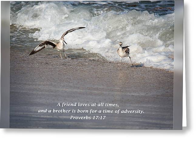 Inspirational Wildlife Prints Greeting Cards - Proverbs 17 17 Greeting Card by Dawn Currie