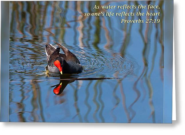 Encouragement Greeting Cards - Proverbs 27 19 Greeting Card by Dawn Currie
