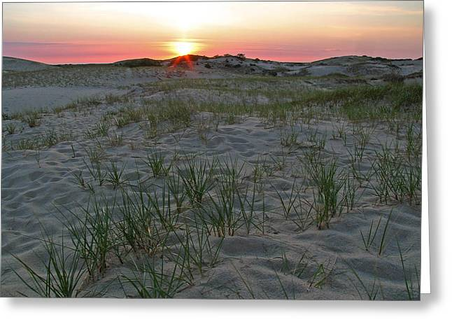 Dune Grass Greeting Cards - Provinceland Dunes Greeting Card by Juergen Roth