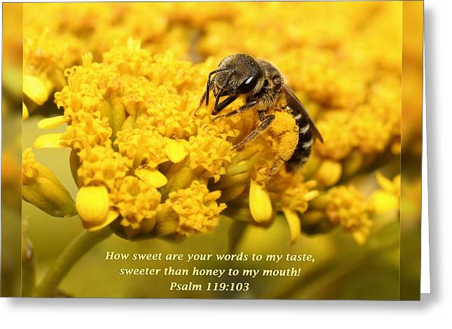Inspirational Wildlife Prints Greeting Cards - Psalm 119 103 Greeting Card by Dawn Currie
