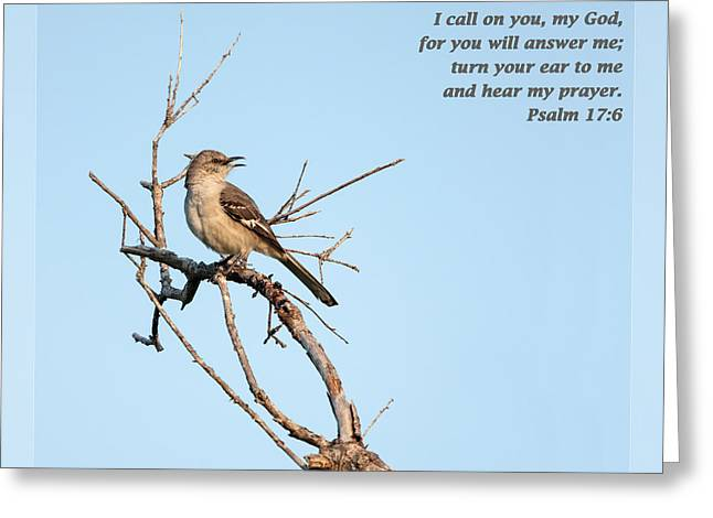 Psalm One Greeting Cards - Psalm 17 6 Greeting Card by Dawn Currie