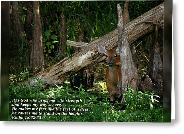 Psalm One Greeting Cards - Psalm 18 32-33 Greeting Card by Dawn Currie
