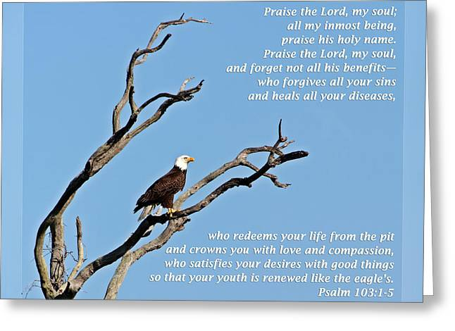 Thank You Greeting Cards - Psalms 103 1-5 Greeting Card by Dawn Currie