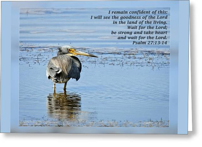 Wildlife Refuge. Greeting Cards - Psalm 27 13-14 Greeting Card by Dawn Currie