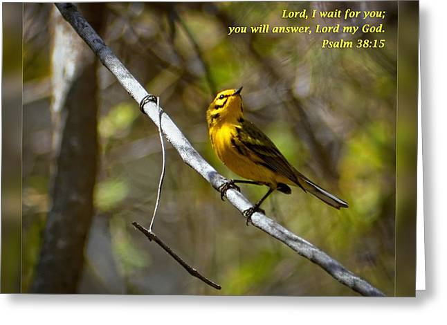 Psalm One Greeting Cards - Psalms 38 15 Greeting Card by Dawn Currie