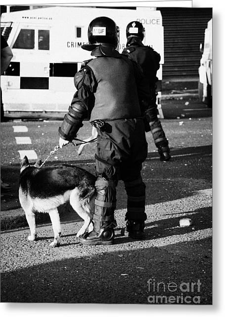 Terrorist Greeting Cards - PSNI dog handler in riot gear with dog on crumlin road at ardoyne shops belfast 12th July Greeting Card by Joe Fox