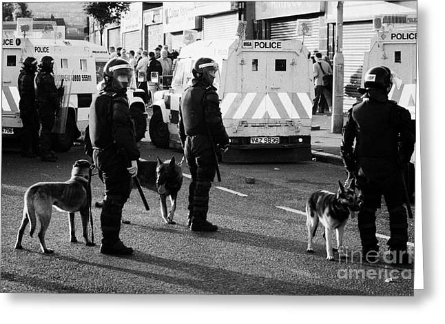 Psni Dog Handlers In Riot Gear And Dogs On Crumlin Road At Ardoyne Shops Belfast 12th July Greeting Card by Joe Fox