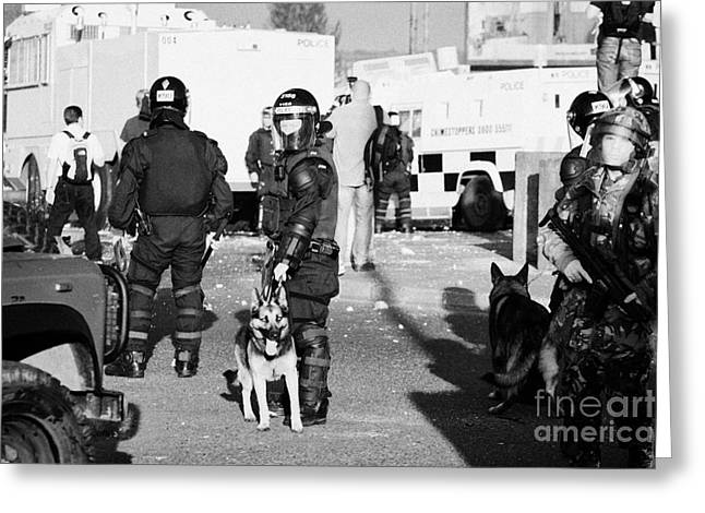 Terrorism Greeting Cards - PSNI riot officers and dog handler and armed soldiers on crumlin road at ardoyne shops belfast 12th  Greeting Card by Joe Fox