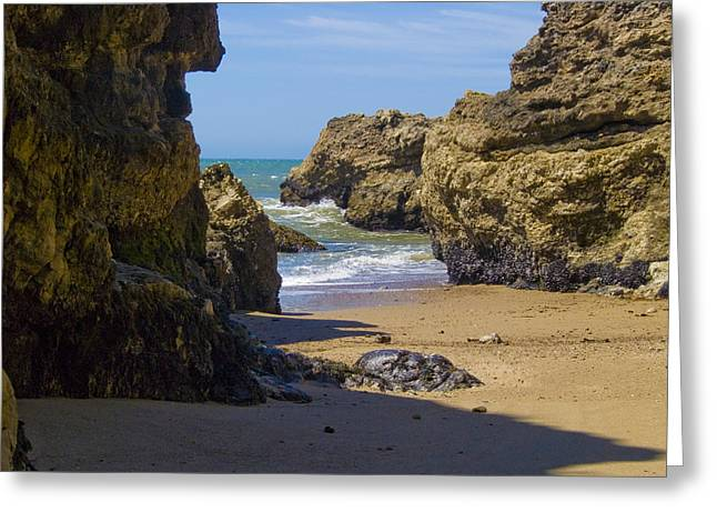 California Ocean Photography Greeting Cards - Pt Reyes National Seashore Greeting Card by Bill Gallagher