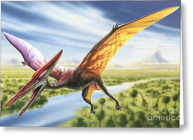 Aggressive Digital Greeting Cards - Pterodactyl Greeting Card by Adrian Chesterman
