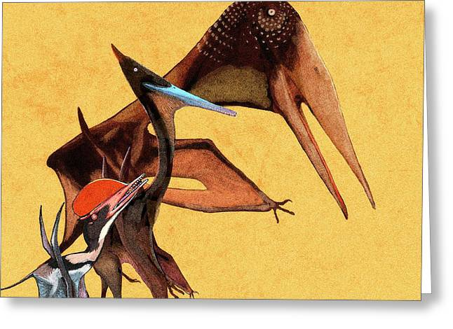 Pterosaur Size Comparison Greeting Card by Nemo Ramjet