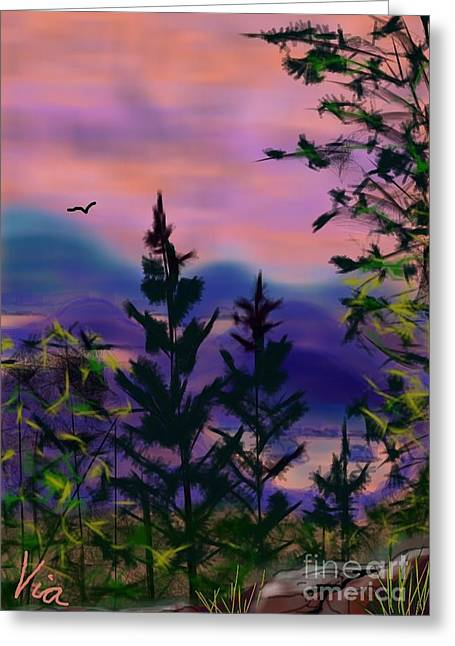 Judy Via-wolff Greeting Cards - ptg.  Mount Baker View Greeting Card by Judy Via-Wolff