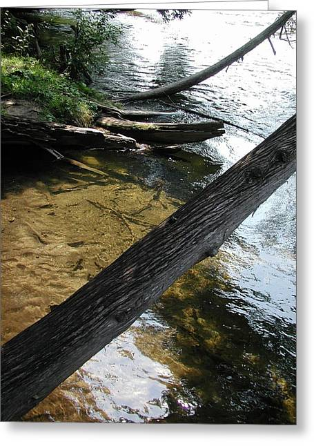 Canoe Photographs Greeting Cards - Public Access Greeting Card by Joseph Yarbrough