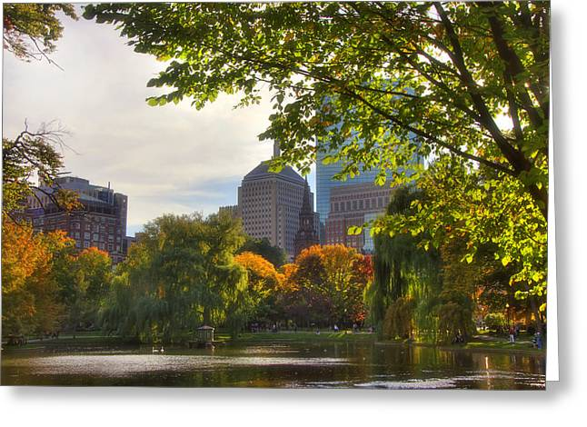 Public Garden Skyline Greeting Card by Joann Vitali