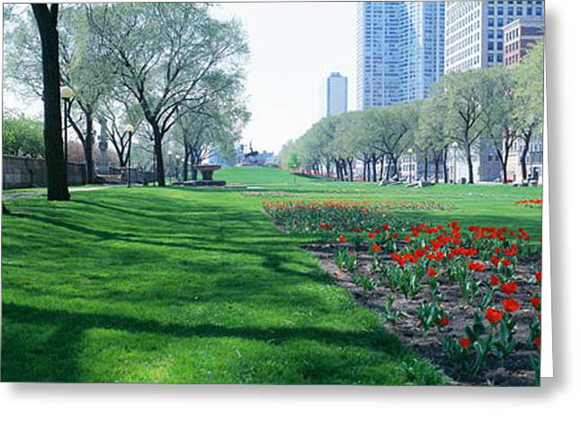City Buildings Greeting Cards - Public Gardens, Loop, Cityscape, Grant Greeting Card by Panoramic Images