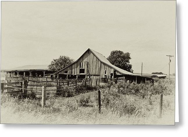 Puckerbrush Rd Barn  Greeting Card by Wilma  Birdwell