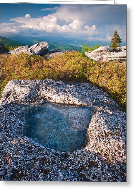Dolly Sods Wilderness Greeting Cards - Puddle in Stone Greeting Card by Michael Blanchette