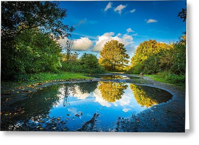 Yellow Dog Greeting Cards - Puddles. Greeting Card by Gary Gillette