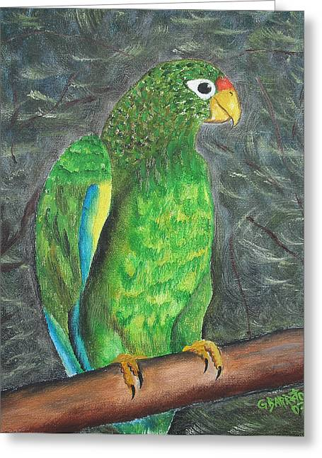 Puerto Rican Parrot Greeting Card by Gloria E Barreto-Rodriguez
