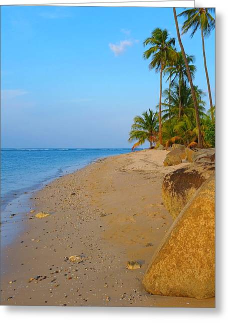 Puerto Rico Greeting Cards - Puerto Rico Beach Greeting Card by Stephen Anderson