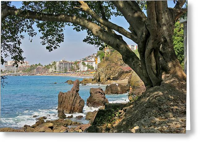 """tropical Trees"" Greeting Cards - Puerto Vallarta from a Distance Greeting Card by Douglas Simonson"
