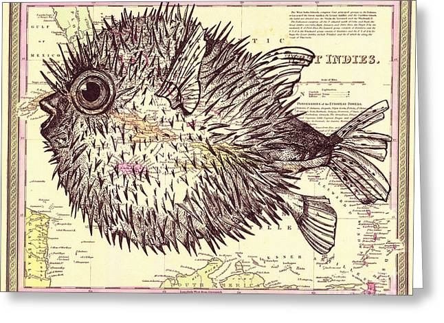 Puffer Greeting Cards - Puffer Fish Greeting Card by Dawn Rosendahl