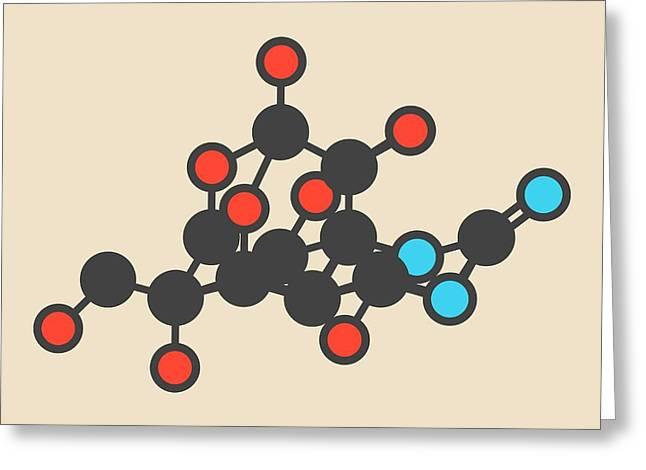 Pufferfish Neurotoxin Molecule Greeting Card by Molekuul