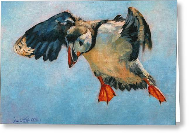 Puffins Greeting Cards - Puffin Greeting Card by David Stribbling