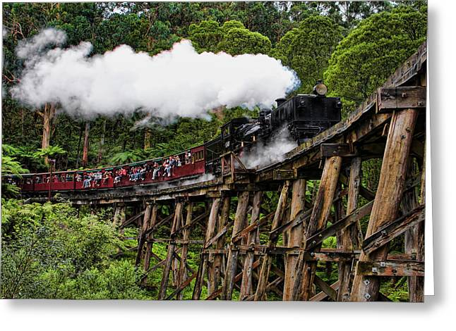 Wooden Train Print Greeting Cards - Puffing Billy Greeting Card by Kim Andelkovic