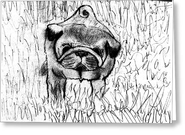 Bestfriend Greeting Cards - Pug In The Grass Greeting Card by Shaunna Juuti