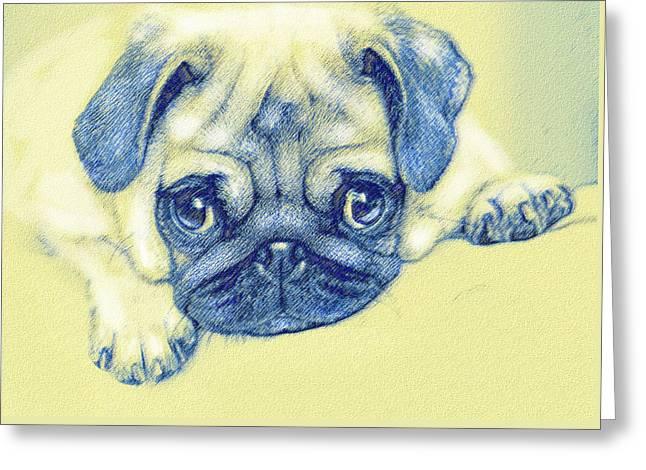 Puppy Digital Greeting Cards - Pug Puppy Pastel Sketch Greeting Card by Jane Schnetlage