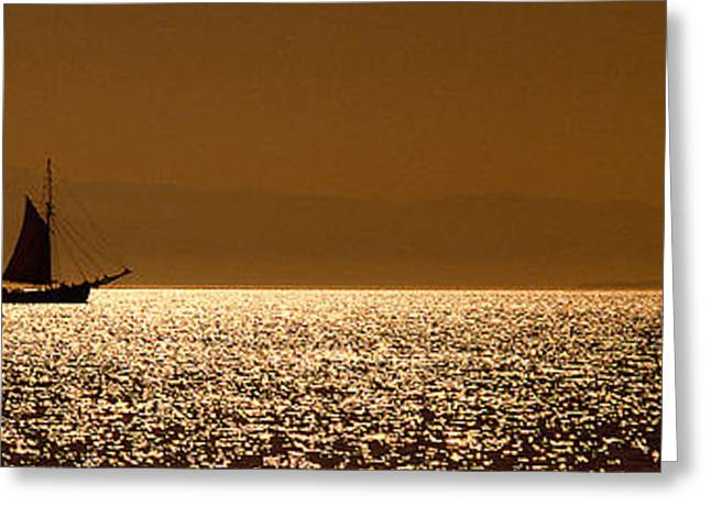 Schooner Greeting Cards - Pugent Sound Greeting Card by Mike Nellums