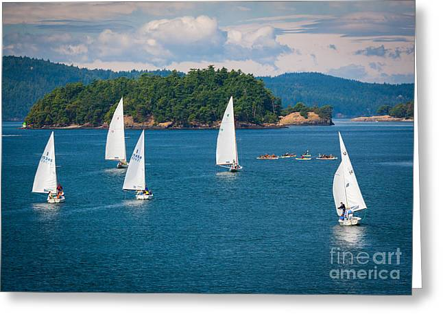 Blue Sailboats Greeting Cards - Puget Sound Sailboats Greeting Card by Inge Johnsson