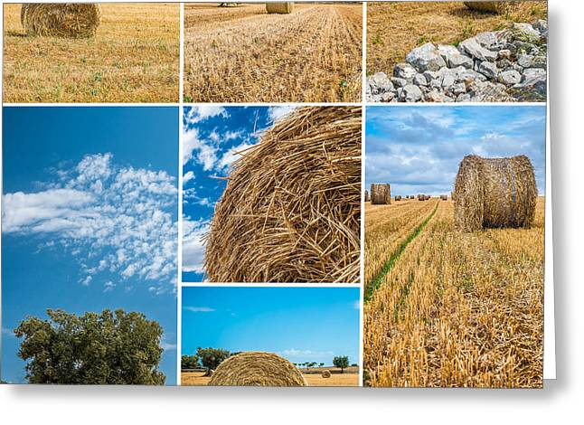 Puglia Countryside Greeting Card by Sabino Parente