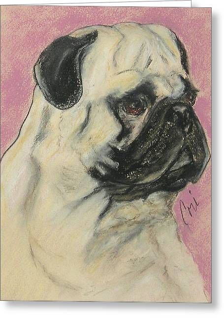 Breed Pastels Greeting Cards - Pugnacious Greeting Card by Cori Solomon