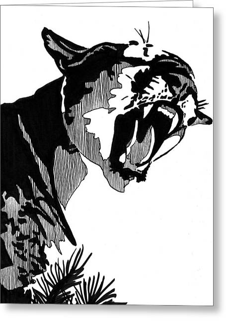 Recently Sold -  - Ink Drawing Greeting Cards - Puma 5x7 Card Greeting Card by Matthew Howard