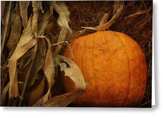 Cornstalks Greeting Cards - Pumpkin and Cornstalks Greeting Card by Nikolyn McDonald