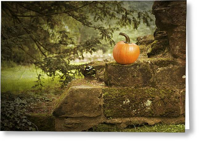 Pumpkin Greeting Cards - Pumpkin Greeting Card by Amanda And Christopher Elwell