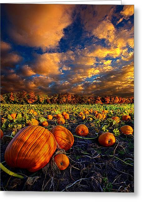 Orange Pumpkin Greeting Cards - Pumpkin Crossing Greeting Card by Phil Koch