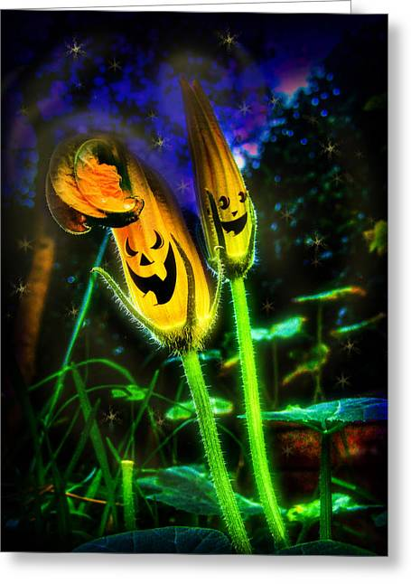 Trick-or-treat Greeting Cards - Pumpkin flowers Greeting Card by Alessandro Della Pietra